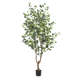 Kunstplant Eucalypthus Tree 180cm