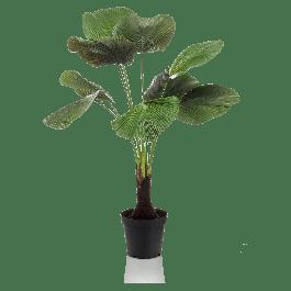 Kunstplant Licuala Palm 130cm