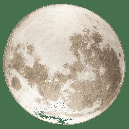 Vloerkleed Outdoor Moon Soft Latte Ø200