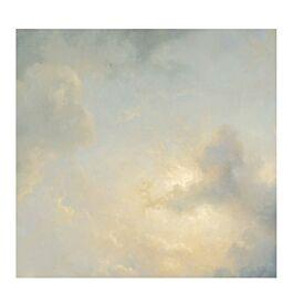 fotobehang golden age cloud 2 280 x 292.2