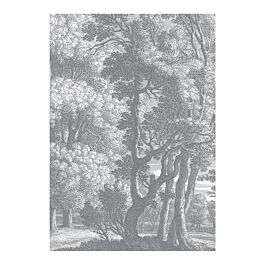 Fotobehang engraves landscapes 3 280 x 194,8