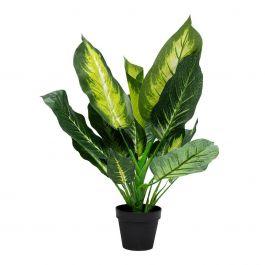 Kunstplant Dieffenbachia 50 cm - Kare Design - www.wantsandneeds.nl - 51680
