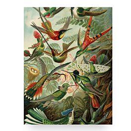 Print op hout Birds - KEK Amsterdam - www.wantsandneeds.nl - HP-009-010