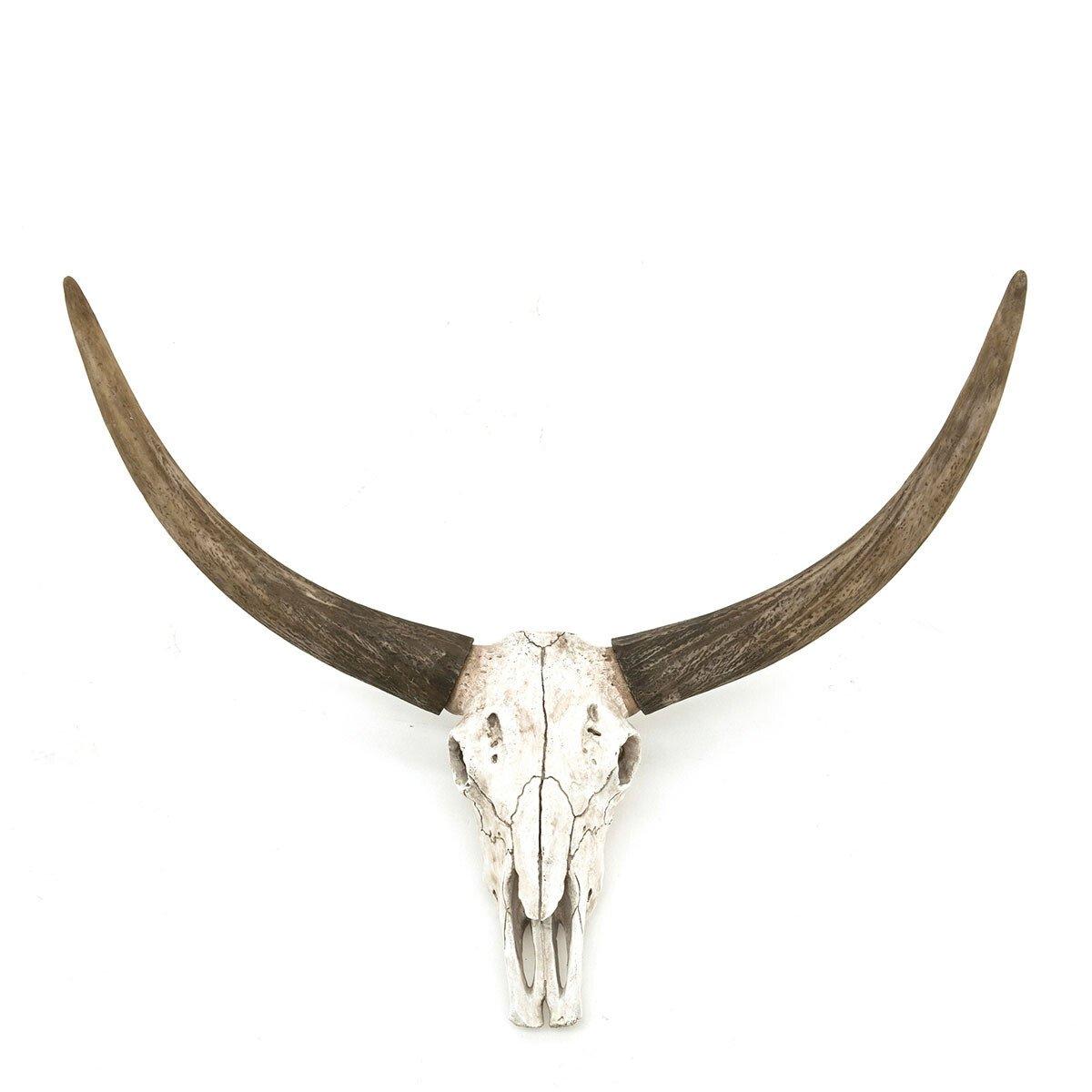 By Boo Dierenkop Ox skull 45 x 68 x 34