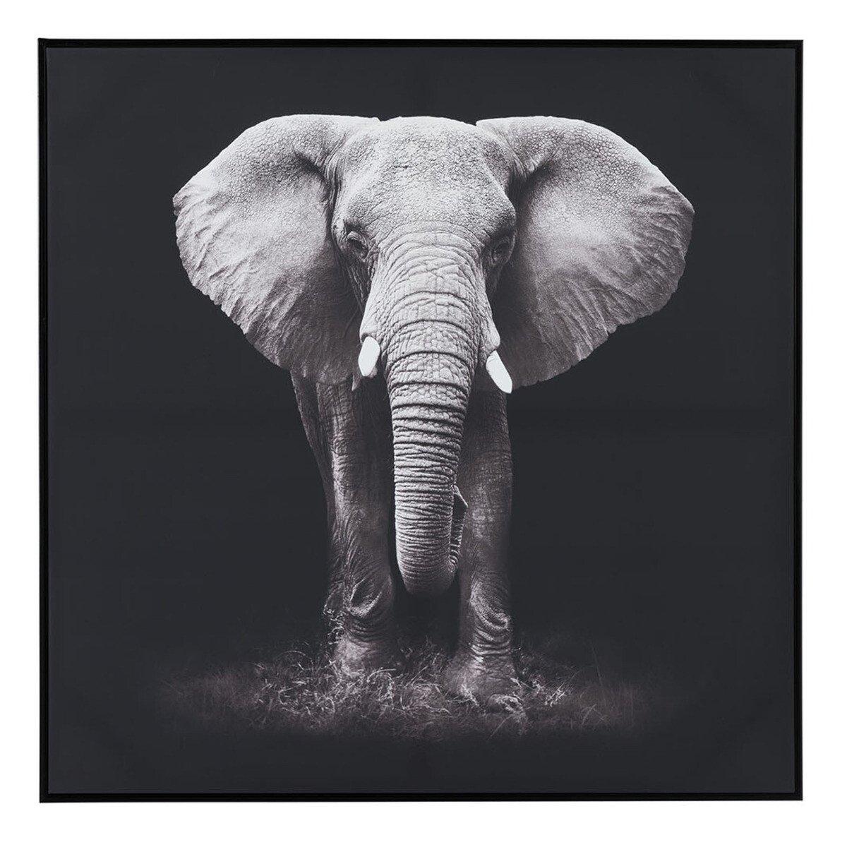 J-Line schilderij olifant 102 x 102 x 4